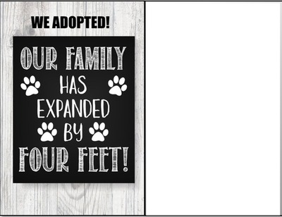 we adopted announcement