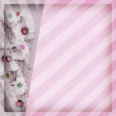 cadre rayures fleurs