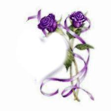 Rose violette
