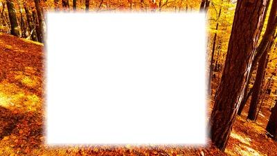 Őszi kép