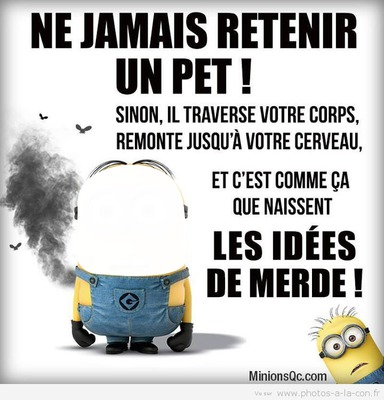 Photo Montage Citation De Minion Pixiz
