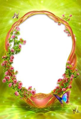 Cadre-fleurs-papillons-fond vert