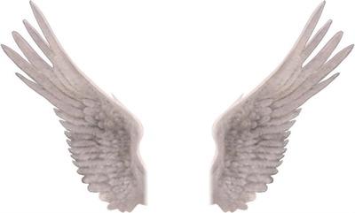 Aile D Ange photo montage ailes d'ange - pixiz