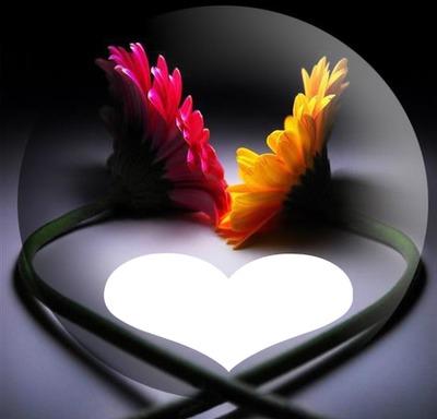 fleur, coeur