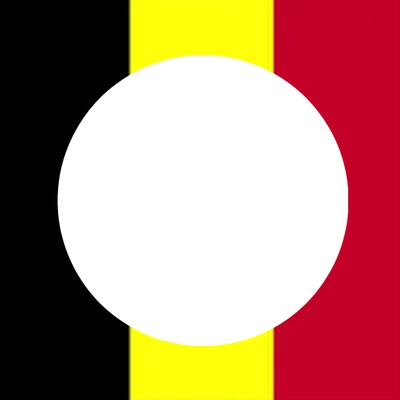 Montage pour photo profil Facebook - Belge