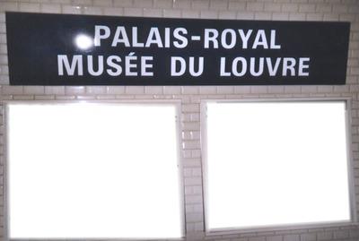 Palais-Royal Musée du Louvre