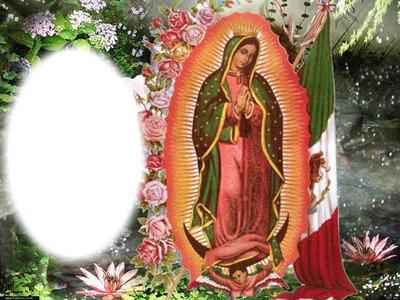 virgen de guadalupe mexico