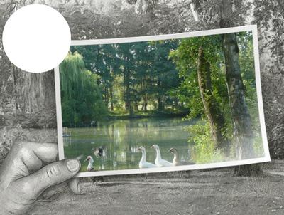 étang de rêve à Biezeveld dessin