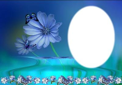 cadre fleurs papillons bleu