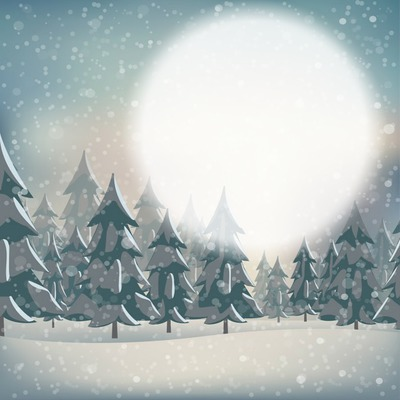 neige sapin 1 photo