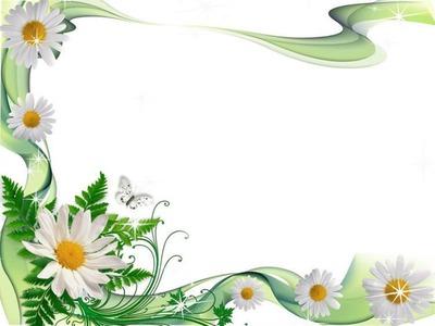 Fleurs-marguerites-papillon