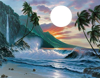 palmier mer