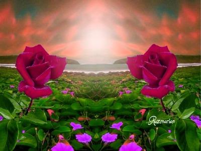 Photo Montage Rosas Para Ti Pixiz