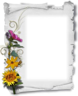 Parchemin blanc - fleurs multicolores