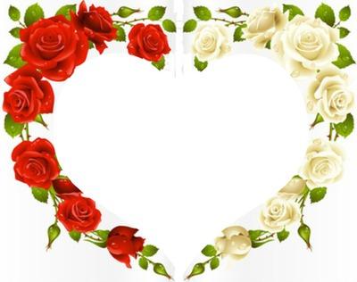 Montage Photo Coeur Fleur Rose Rouge Blanche Pixiz