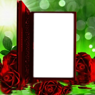 Cadre livre rouge