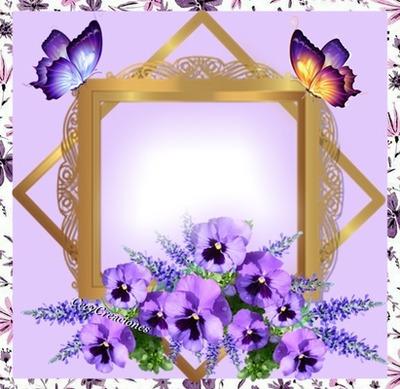 Cc marcos,flores y mariposas
