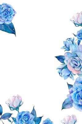Délicate rose