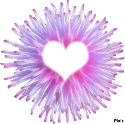 fleur^^coeur