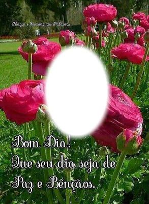 """Rosas!!Por""""Maria Ribeiro"""""""