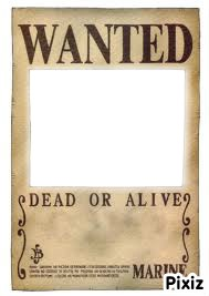 Wanted-One piece