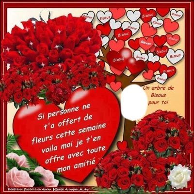 Roses et Arbre à bisous