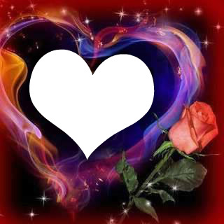un coeur avec une rose 1 photo