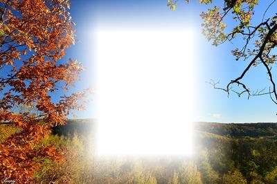 őszi táj