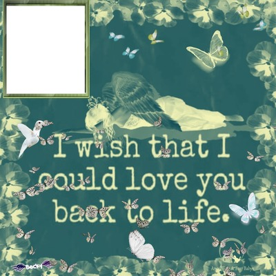i wish i could love you back to life