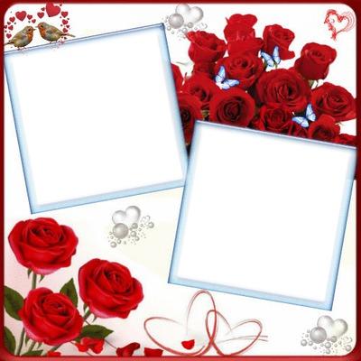 2 photos rose fleur love iena