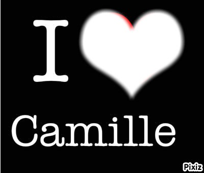 I love camille