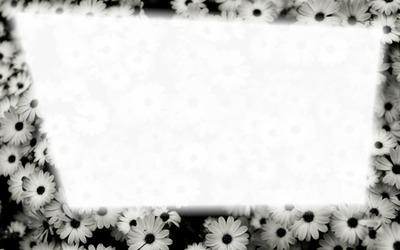 Fondu Floral