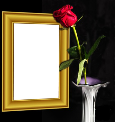 Red rose and frame