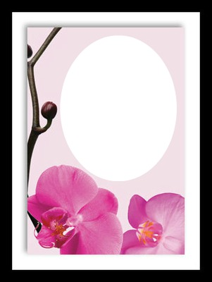 Photo montage Pink flowers love frame - Pixiz