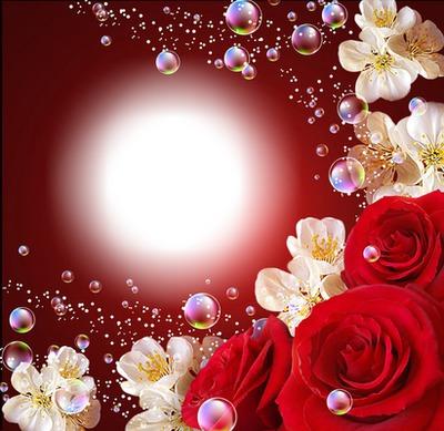 Cadre fleurs & bulles