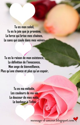 rose amour