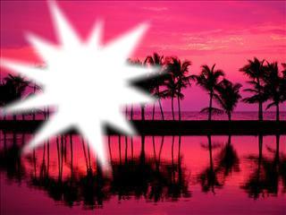 Coucher du soleil sur palmier