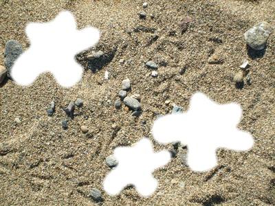 pattes d'oiseau sur une plage de st-TROPEZ