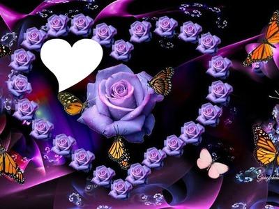 des roses violettes en forme de coeur avec des papillons 1 photo