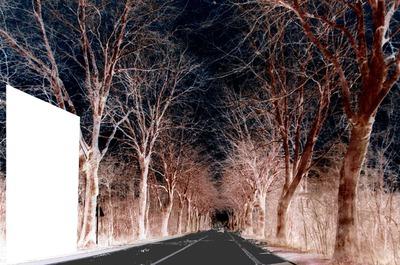les nuits magiques -1 photo