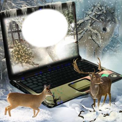 Paysage d'hiver*