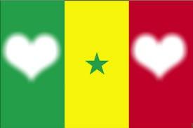 Le Drapeau Du Sénégal