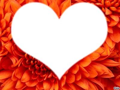 coeur sur fleur orange
