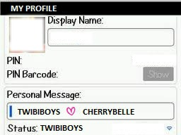 PROFILE BBM TWIBIBOYS