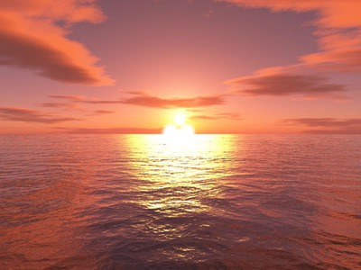l'amour au fond de la mer