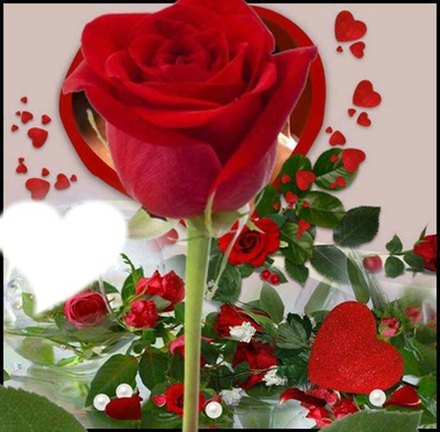 Roses rouges + coeurs