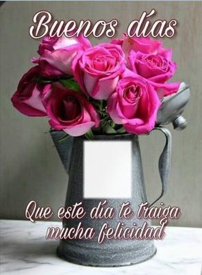 Cc Rosas de buenos días