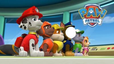 Los paw patrol