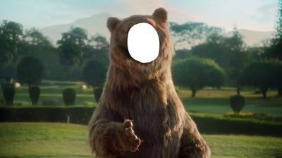 Urso Old Spice