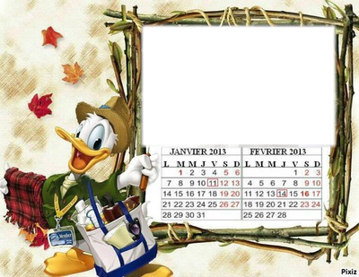 PICSOU JANVIER -FEVRIER 2013